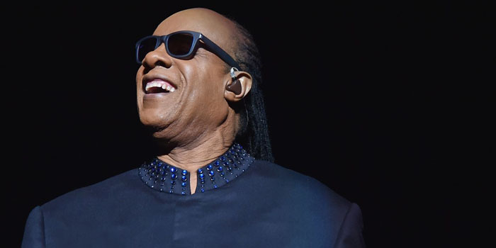 Simulador de Stevie Wonder